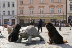 _1210597_Olomouc